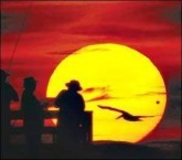 A pelican is in motion, across the face of the rising sun, with the planet Venus, as seen from  Flagler Beach Pier in Daytona Beach, Daytona, USA.