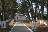 '' a village church''