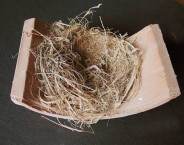 Bird nest on tile
