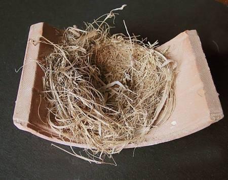 Bird nest on tile