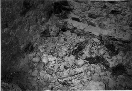 Skulls of the Martyrs at Mylopotamos