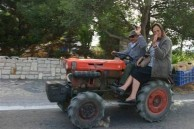 little tractor.