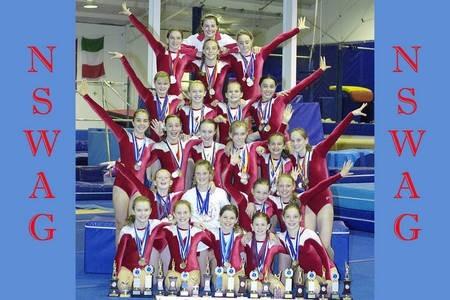 New South Wales Amateur Gymnastics Team. 2006.
