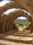 Arches by Wilma Allex