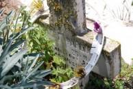 Fardoulis grave marker - Potamos Cemetery (1 of 2)