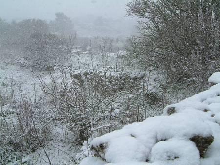 Snow in 2004 II