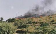 Bushfire June 2003