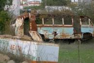 Overgrown Bus