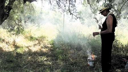 Spirits of '42nd Street' - Smoking ceremony Reg Saunders' daughter Dorothy in the olive grove. Picture Michael Sweet