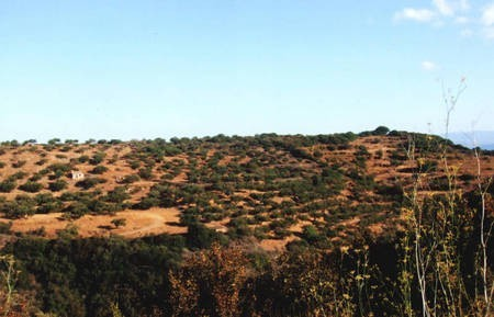 Another view of that magnificent block of land at Potamos.