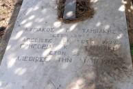 Tambakis Family Plot - Logothetianika (Close Up)