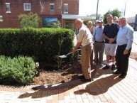 The Founders tree was planted on the corner of Cunningham Street, Bingara