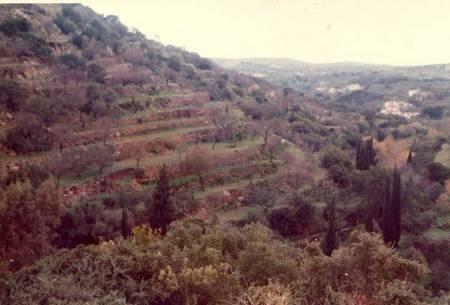 Karavas in 1974