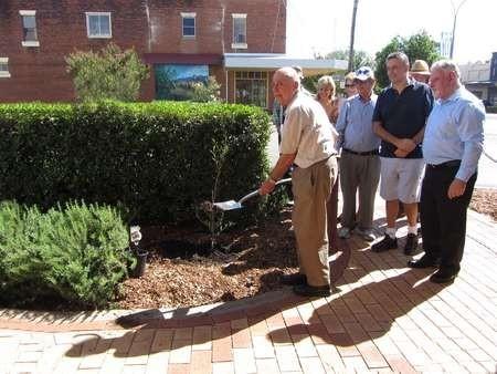 The Founders tree was planted on the corner of Cunningham Street, Bingara
