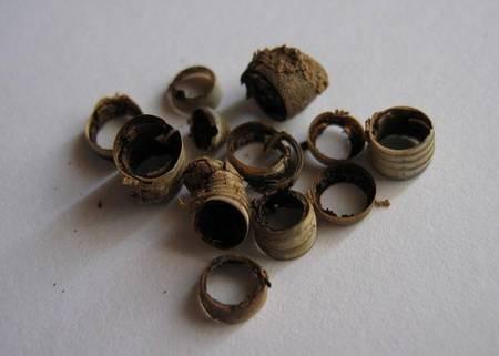 Rings of a dead Vromopapadia